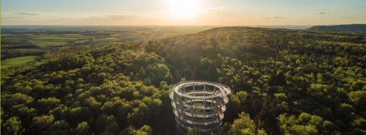 Treetop Walk Steigerwald in Germany
