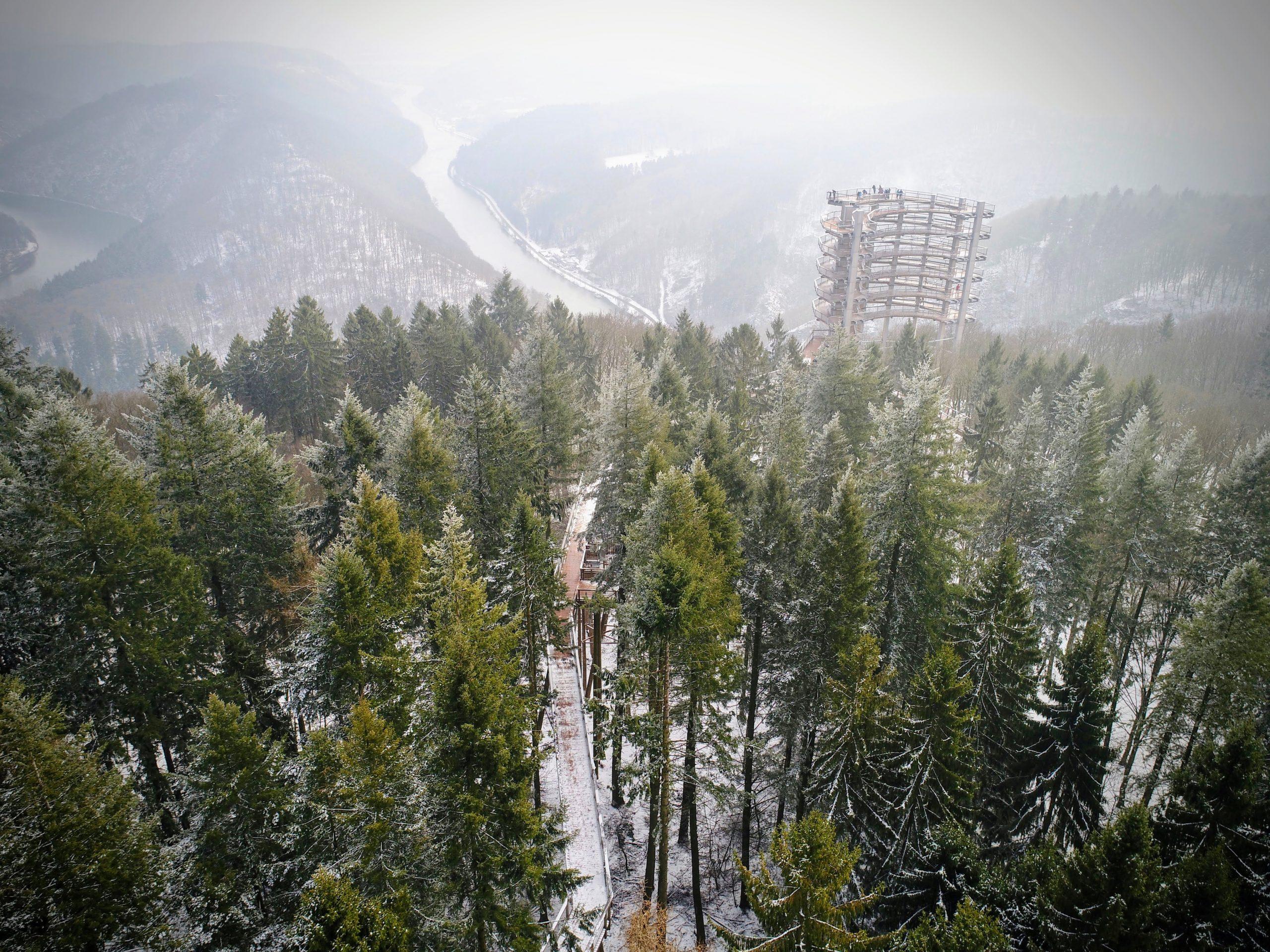 Germany's Saarschleife Treetop Walk